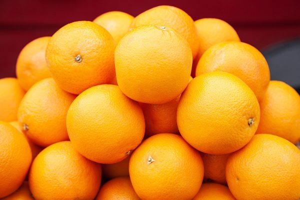 Citrus & Melon Packers